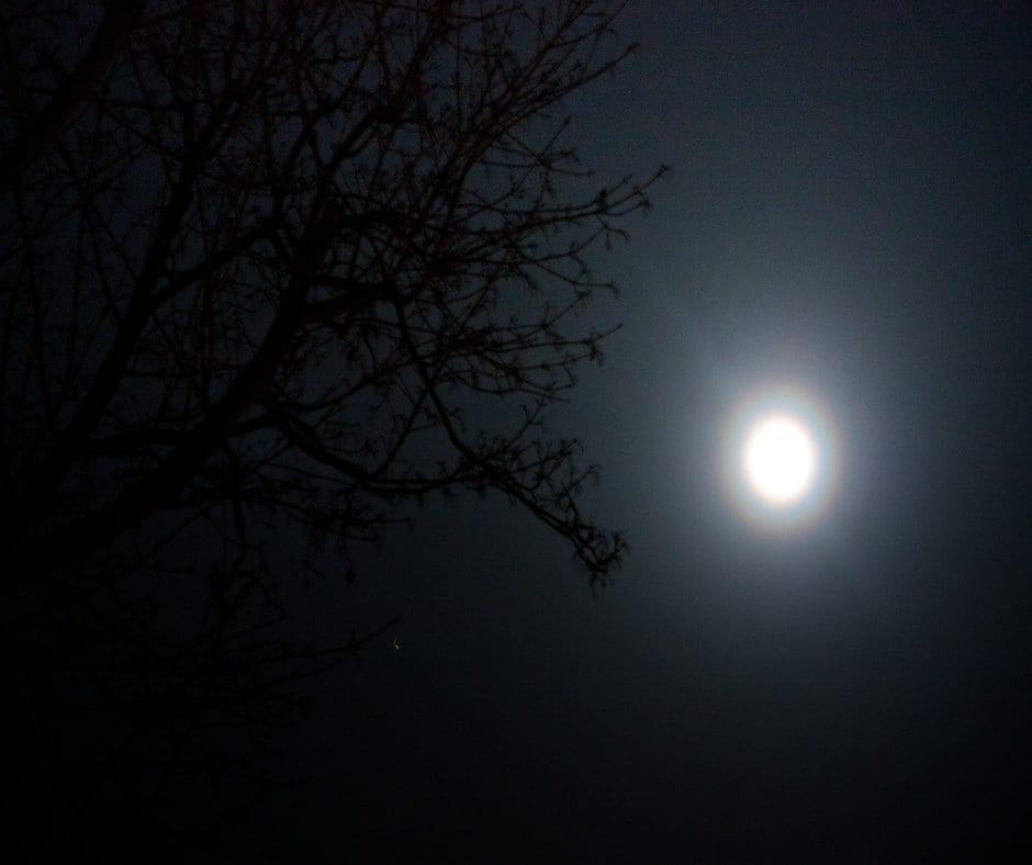 Rahu and Ketu in Leo and Aquarius – Planetary Sara