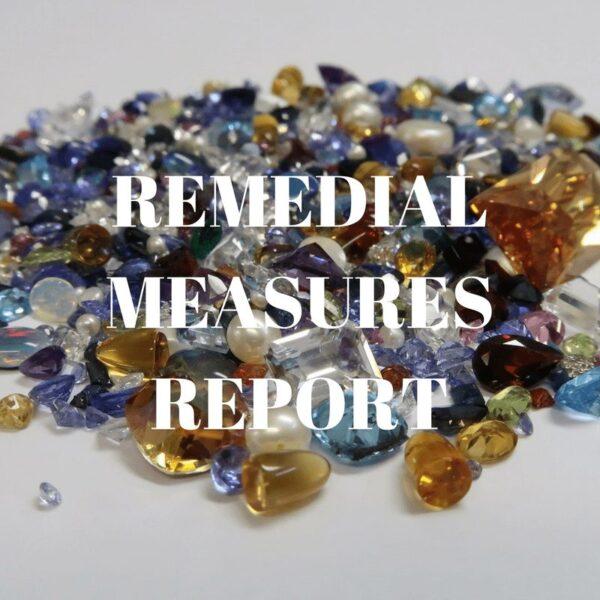 Remedial Measures Report